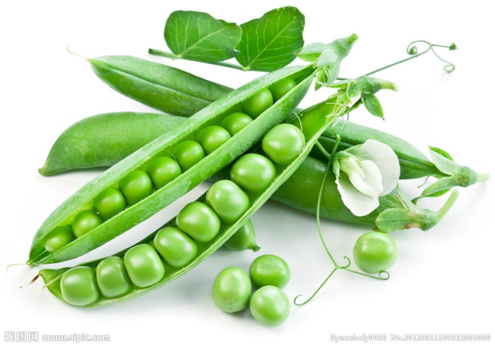 Vegetable-fruit-sweet-font-b-pea-b-font-seeds-font-b-Snow-b-font-font-b